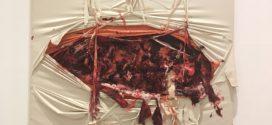 L'arte di Anish Kapoor fino ad aprile al MACRO di Via Nizza