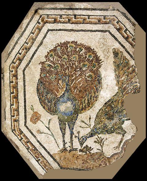 Musei Capitolini, Antiquarium, Mosaico policromo ottagonale con pavoni